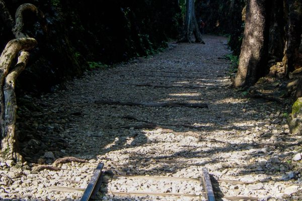 The last remaining rail tracks on the memorial