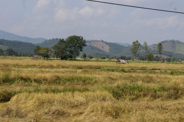Scenery on the way to Chiang Khong