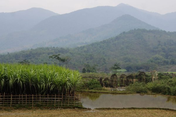 Rice, sugar and mills - welcome to rural Vietnam