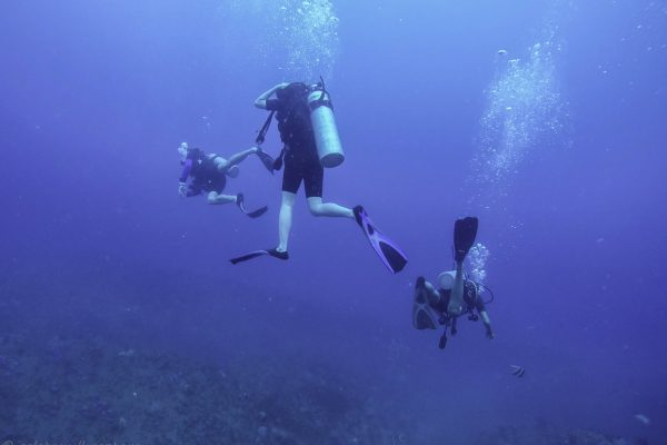 Our first dive