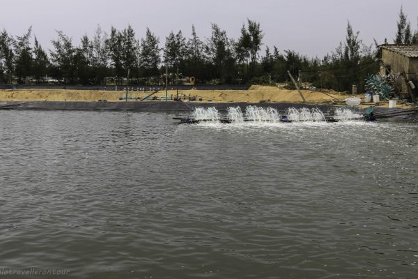 One of the many fish farms seen