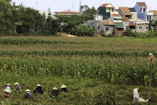 Farmers working in front of a picturesque village