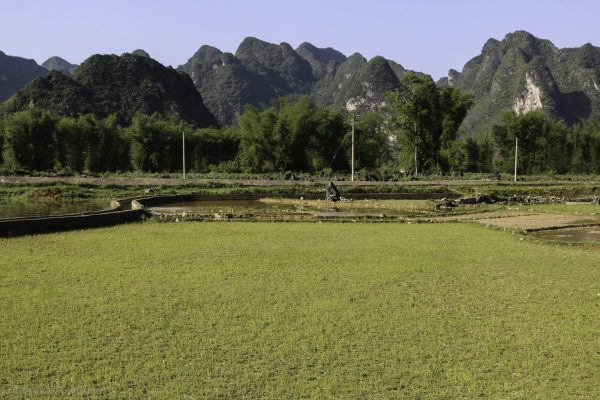 Irrigation systems for the fields