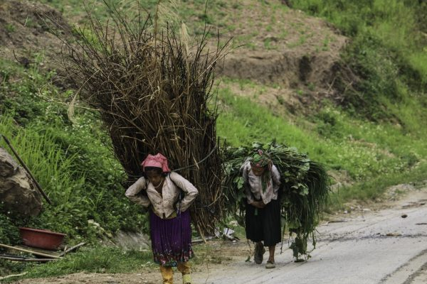 Local working very hard - their back wil never be the same