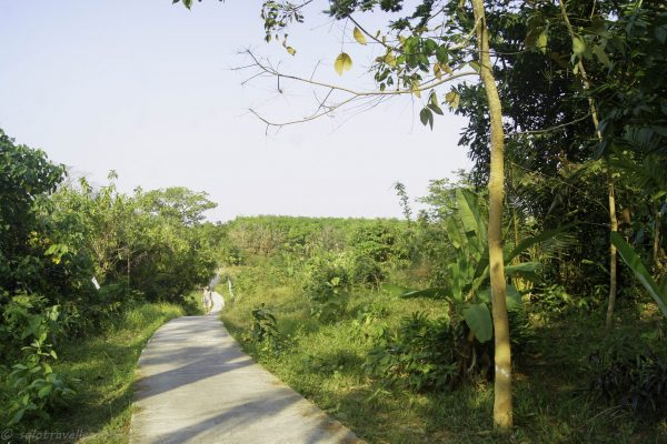The road down from Aow Yai to the cntre of the island