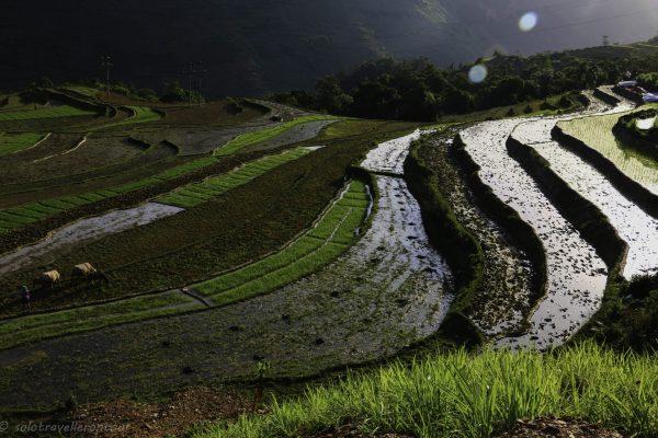 Experience real rural Vietnam