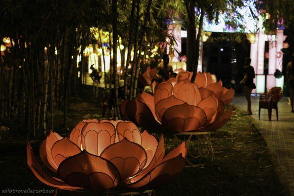 Hughe lantern flowers