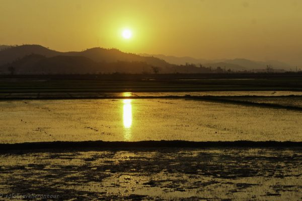 bsolute stunning sunset over rice paddies