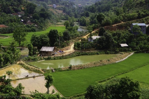 You will constantly see some great views of rural Vietnam
