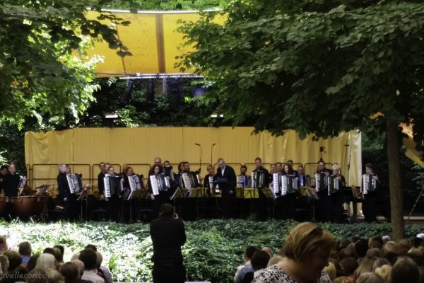 The accordion orchestra during the concert