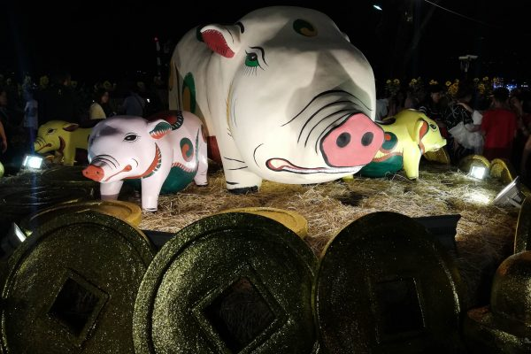Some quite scary looking pigs...