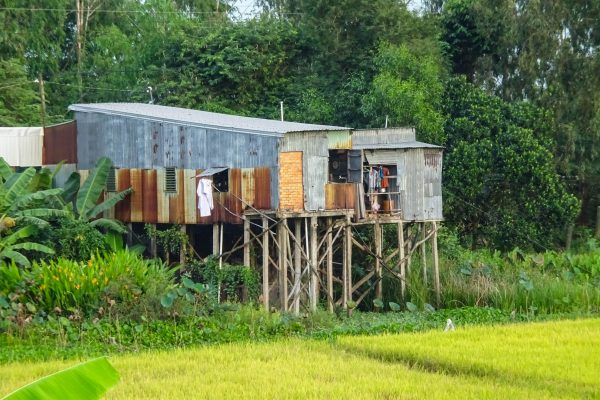 Some final rural views before entering Chau Doc