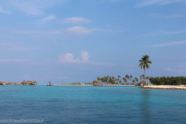 One of the many beautiful islands of the Maldives
